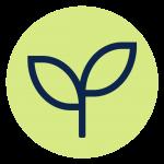 Die Agrophotovoltaik – Strom und Landwirtschaft kombiniert