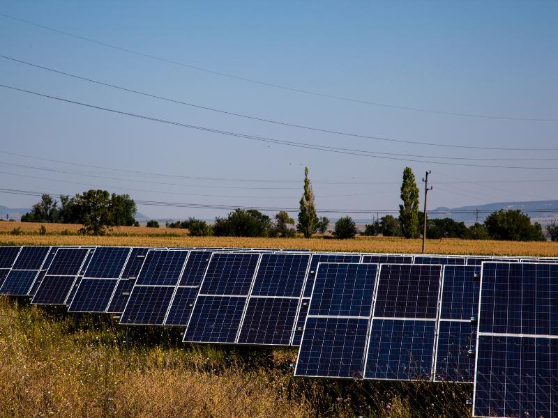 Solarenergie Zukunft Agrophotovoltaik