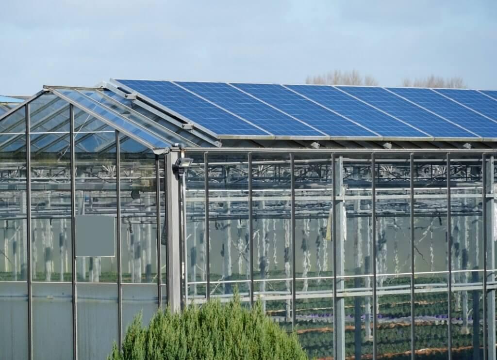Antec Solar stattet auch Gewächshäuser mit Solarmodulen aus.